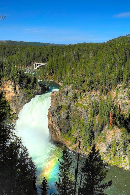 The Grand Canyon of Yellowstone | GI 365