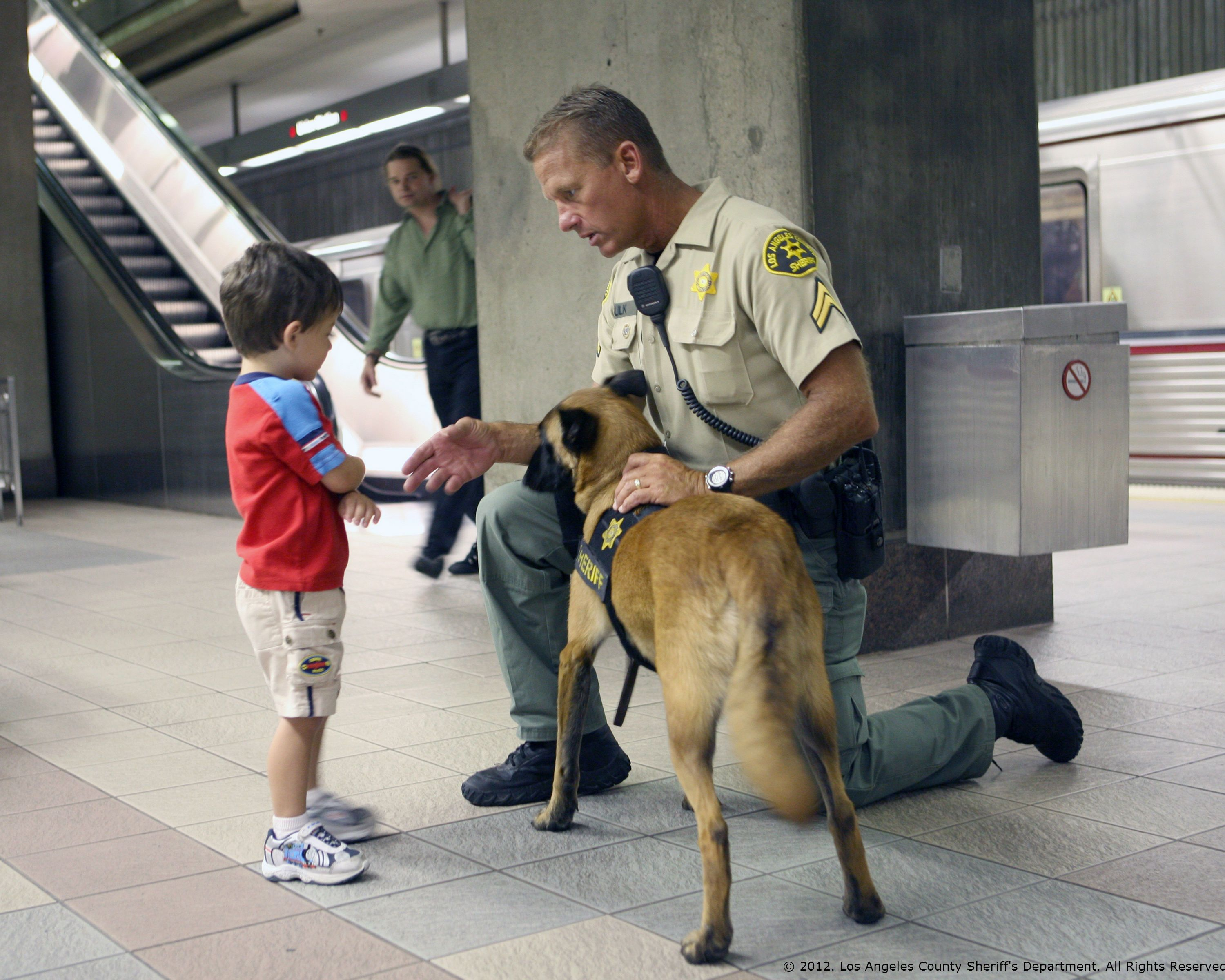 Young Boy Meeting K 9 Dog At A Metrolink Station Military Working Dogs Military Service Dogs Military Dogs