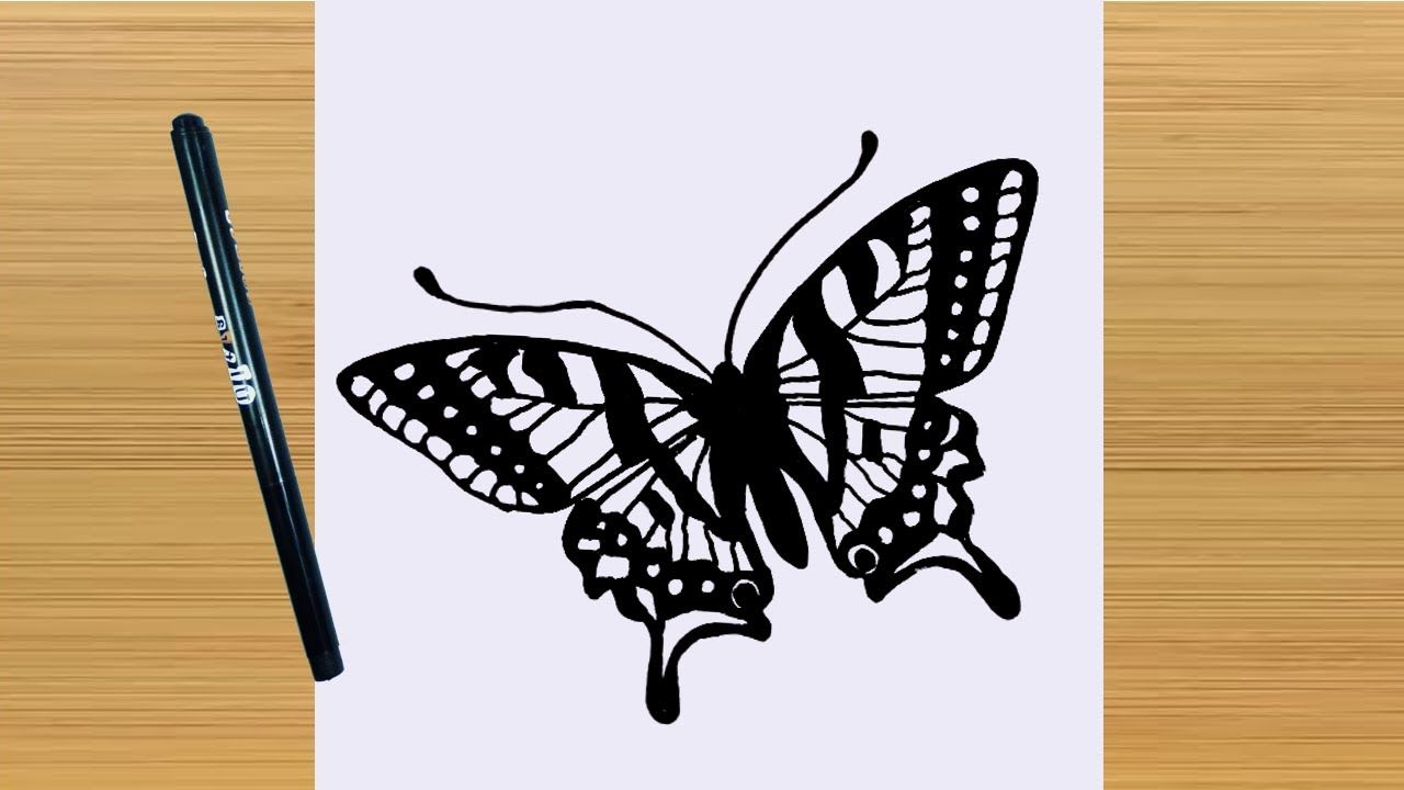 How To Draw A Butterfly Easy Butterfly Drawing How To Draw A Butterfly Easy Butterfly Drawing Butterfly Drawing Easy Drawings
