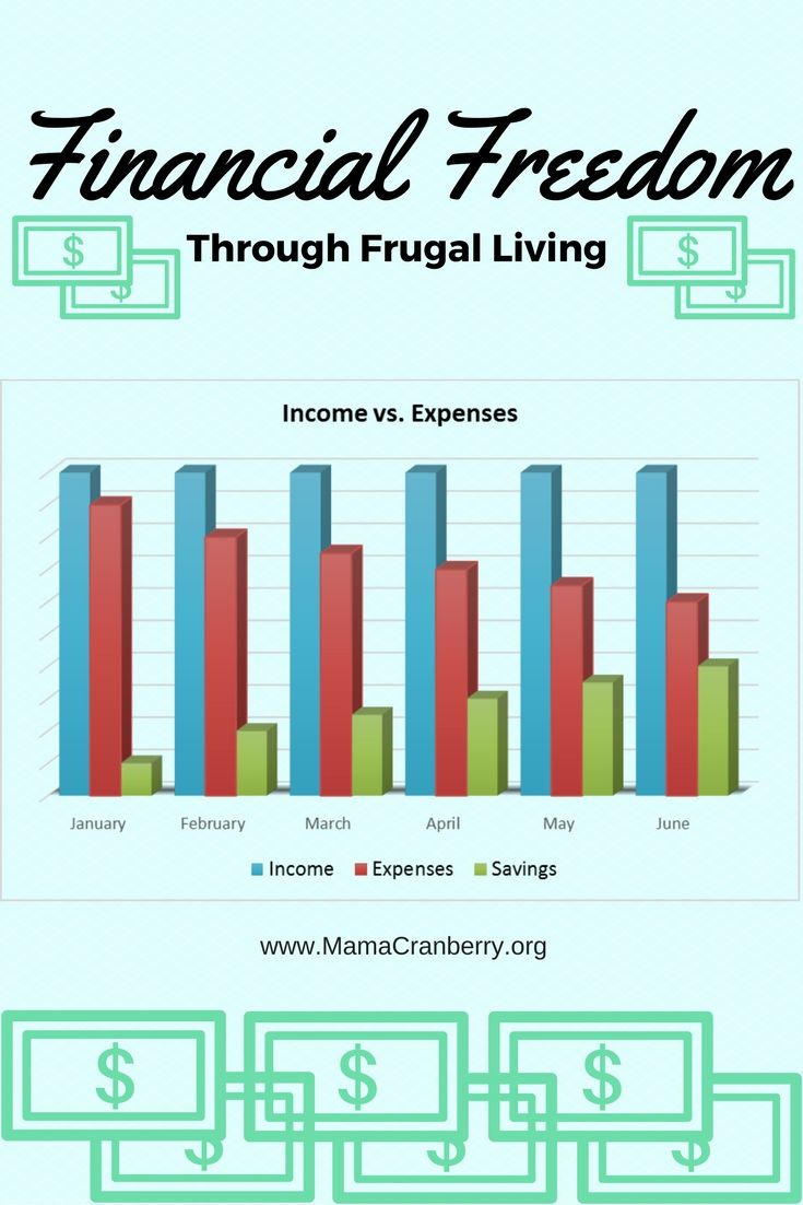 Financial Freedom When thinking of Financial Freedom, it pays to think big!  Don't stop at just making ends meet at the end of the month.  Don't stop at just having a little extra money in the bank.  Think about aContinue reading... Financial Freedom Through Frugal Living
