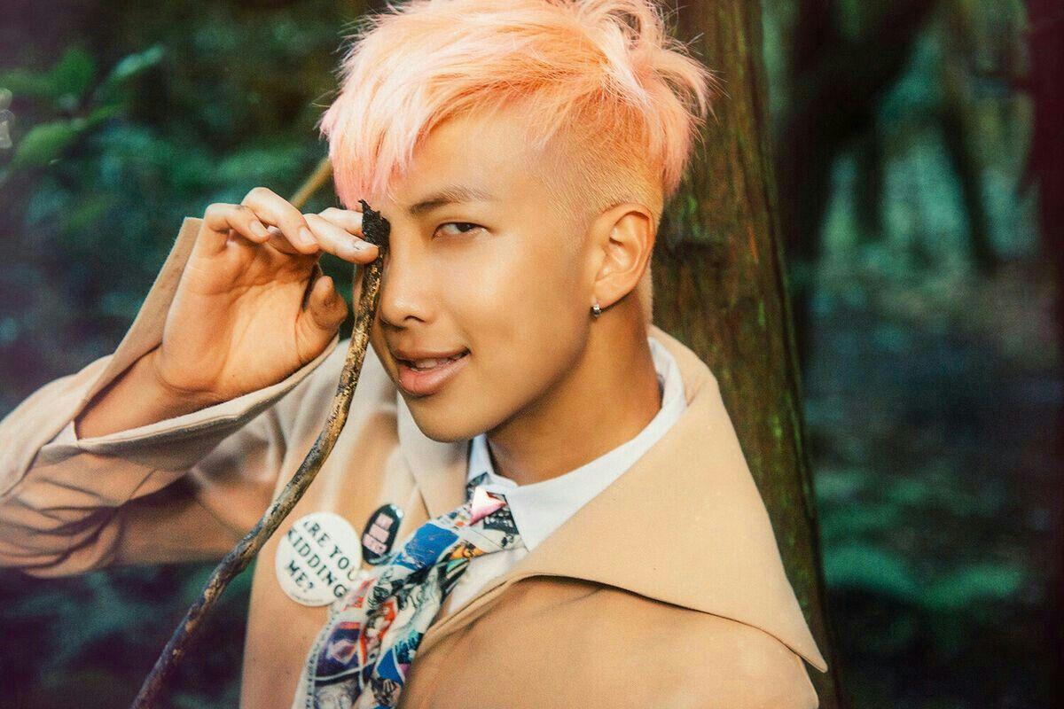 화양연화 pt.2 - 'Papillon (나비)' : Rap Monster | 김남준