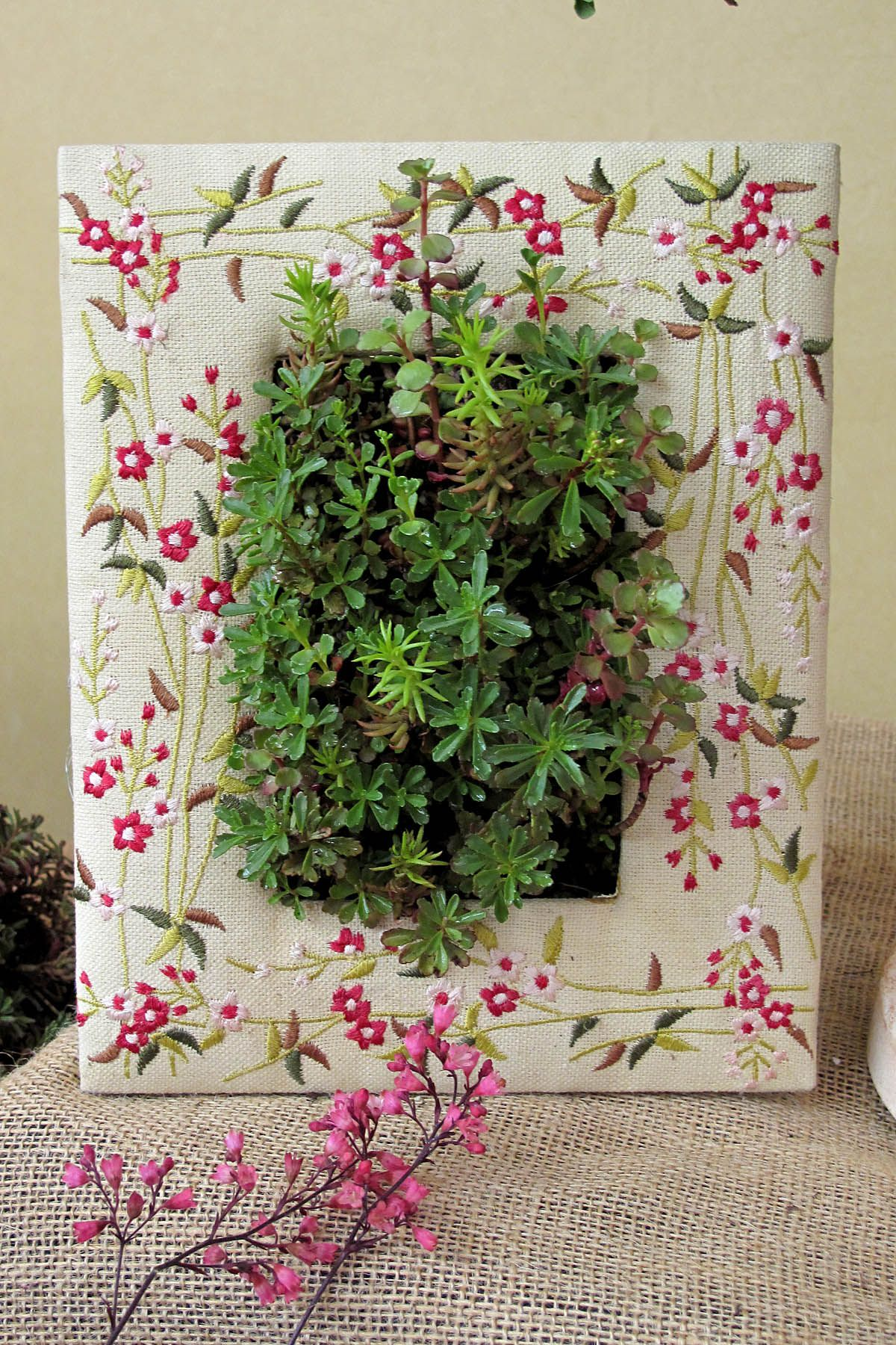 SedumSod in a picture frame Outdoor display table or hang Place