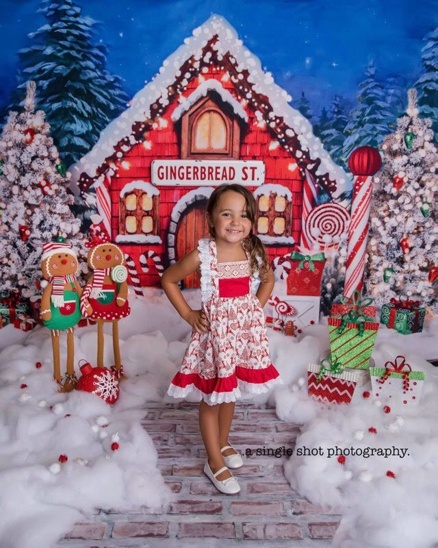 Christmas Candyland Backdrop.Santa Cottage Christmas Photography Backdrop Only Available