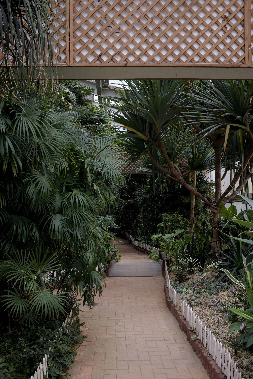 Seoul Forest Botanical Garden
