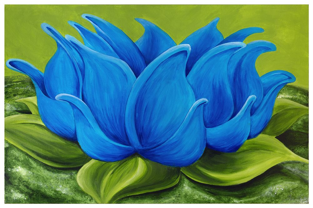 Acrylic Lotus Flower For Beginners Google Search Easy