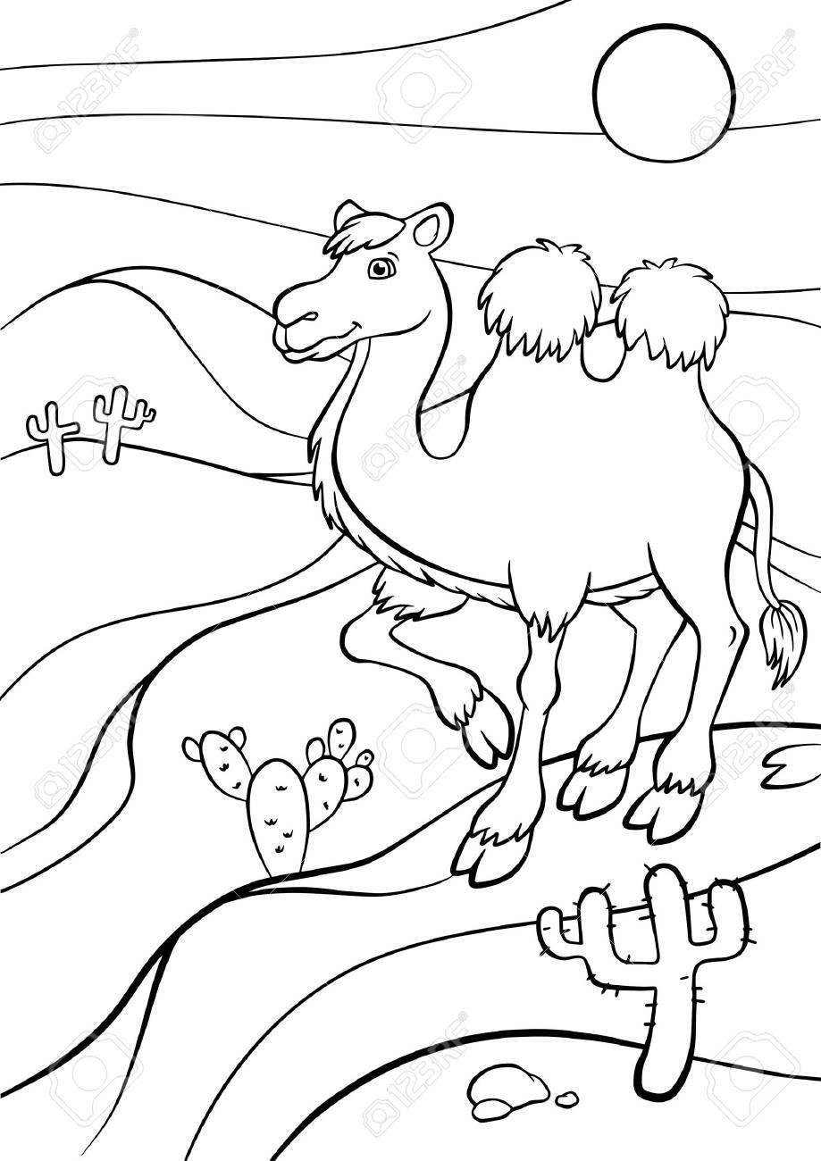 Resultado De Imagen De Dibujos Para Colorear El Desierto Animales Del Desierto Dibujos Para Colorear Paisaje Para Colorear