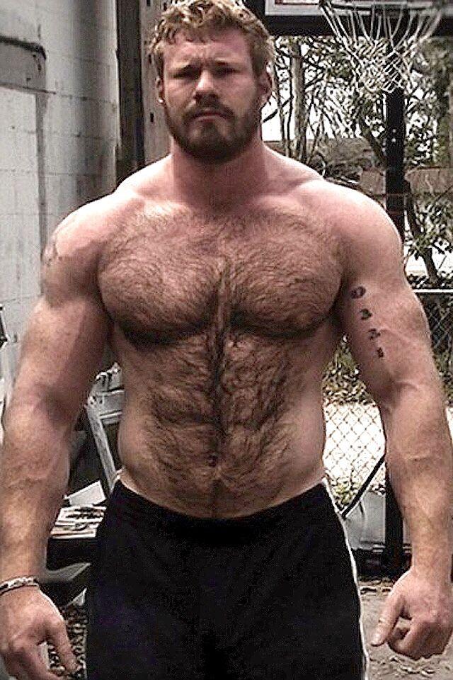 Pin by Vinny Bearman on Big Muscle Bears | Pinterest