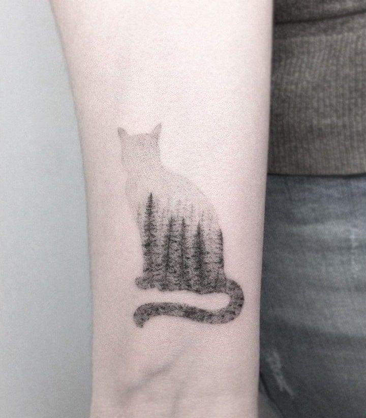 Eine Katze Ist Nicht Nur Ein Haustier Seit Der Antike Ist