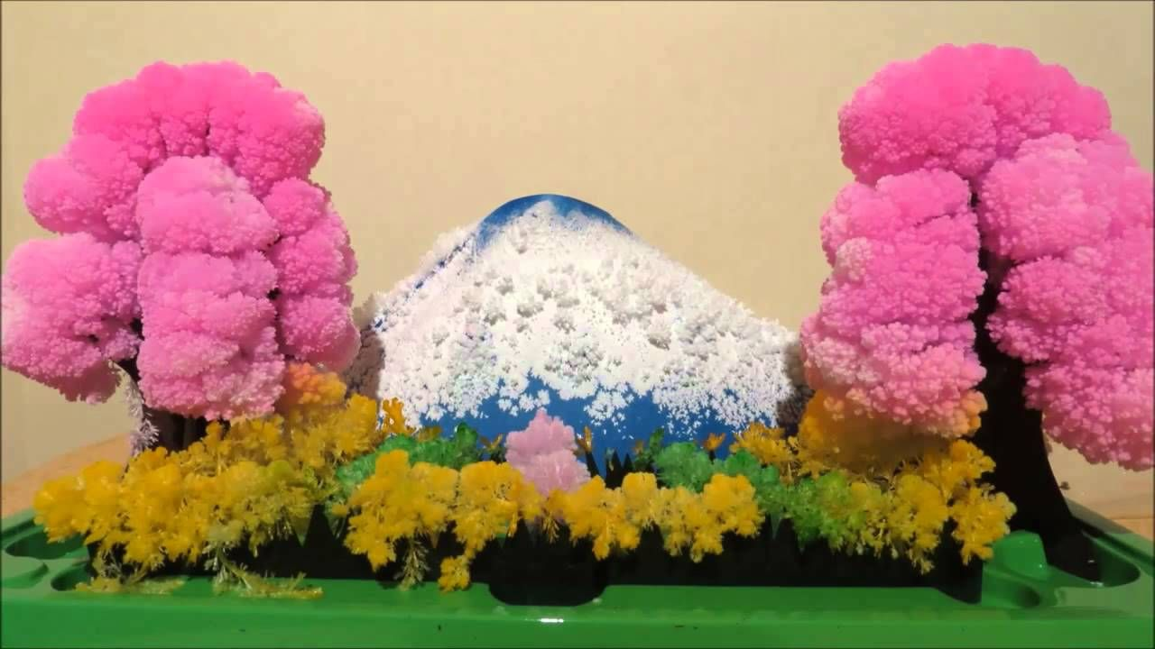 Time Lapse Of The Magic Garden Crystal Landscape Growing Kit