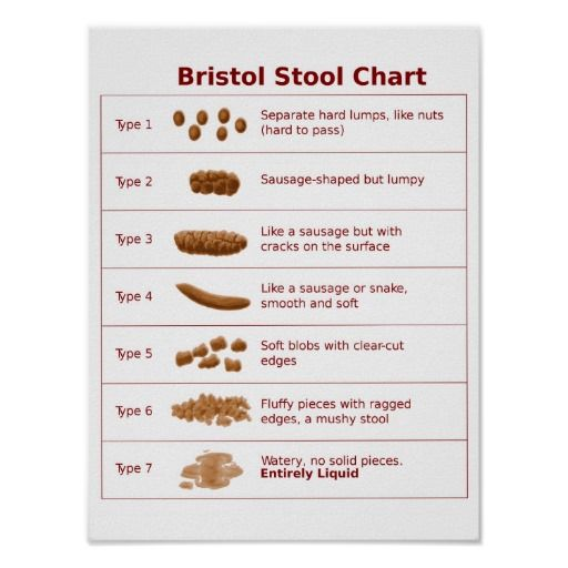 Scale   Zazzle com is part of Bristol stool chart -  Scale created by globetrotters  Personalize it with photos & text or purchase as is!