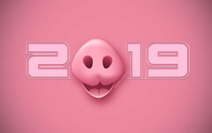 download wallpapers 2019 pig background happy new year 2019 pink rh pinterest com