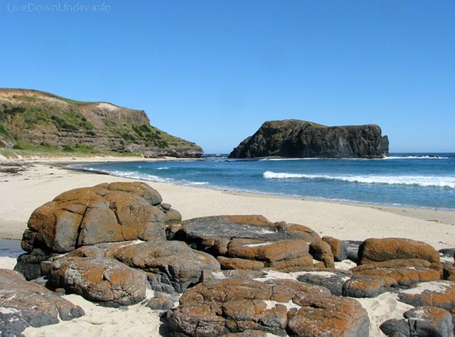 Bushrangers Bay, Victoria (With images) | Beautiful ...