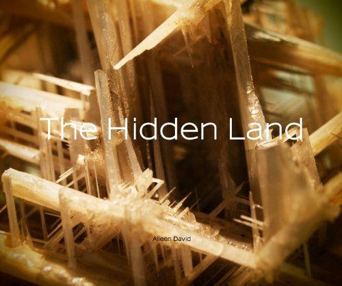 The Hidden Land by Aileen David http://www.amazon.com/dp/1320012744/ref=cm_sw_r_pi_dp_iC2vvb0ND1KRF