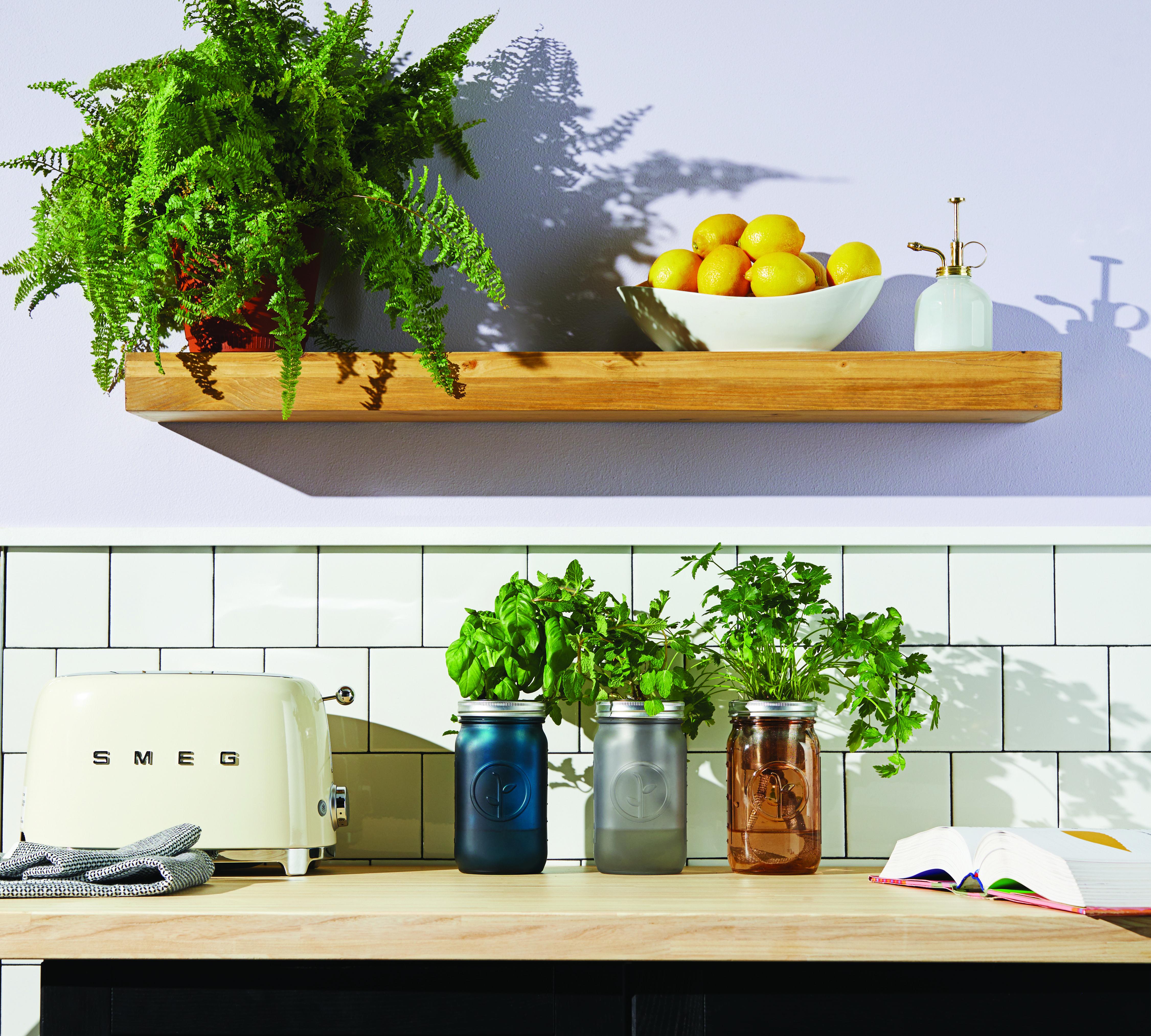 Hydroponic Herb Garden Kits Herb garden kit, Self