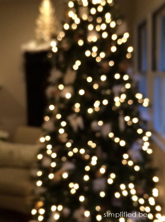 twinkle light Christmas tree - Simplified Bee #xmastree #christmaslights - Twinkle Light Christmas Tree - Simplified Bee #xmastree