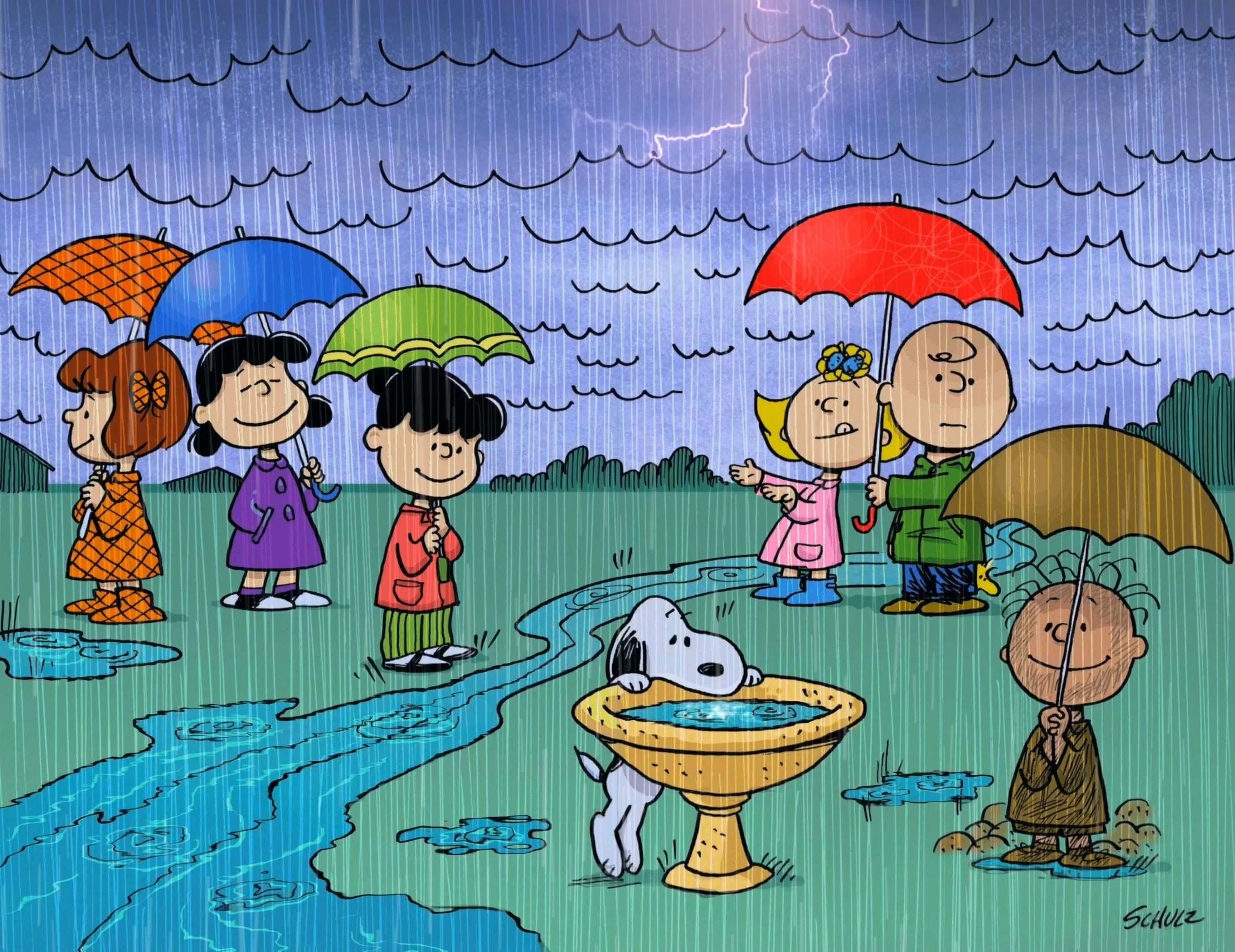 Charlie Brown and the Peanuts