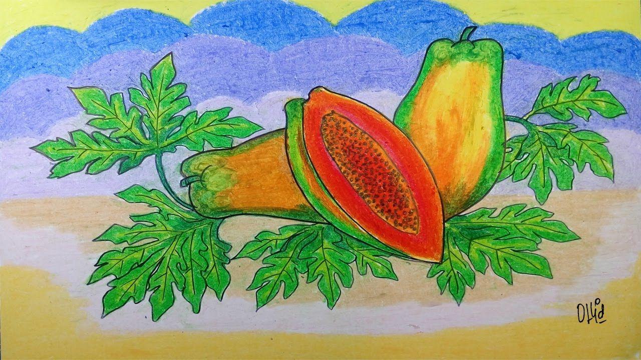 Cara Menggambar Buah Pepaya Dengan Crayon Oil Pastel Gambar Cara Menggambar Pastel