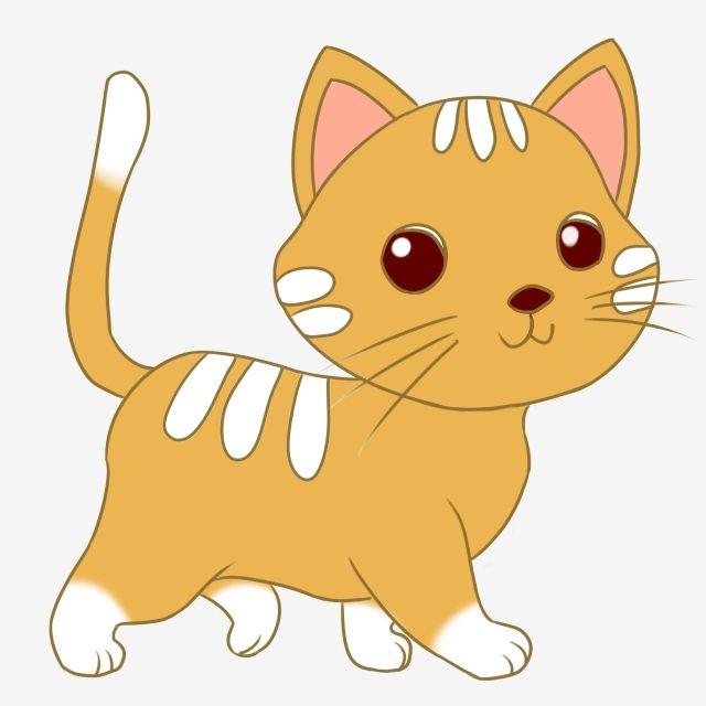 귀여운 애완 동물 만화 동물 애완용 고양이 그림 고양이 애니메이션무료 다운로드를위한 png 및 psd 파일 kartun gambar kucing lucu www pinterest jp
