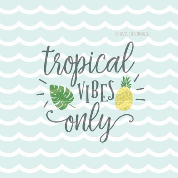 Pineapple SVG File  Tropical Vibes Only SVG Cricut Explore & more
