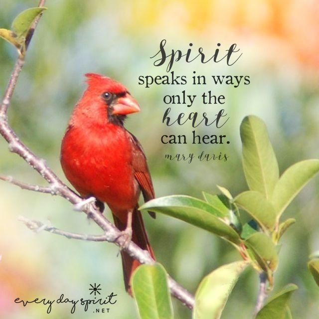 Spirit speaks. xo See the app of uplifting mobile