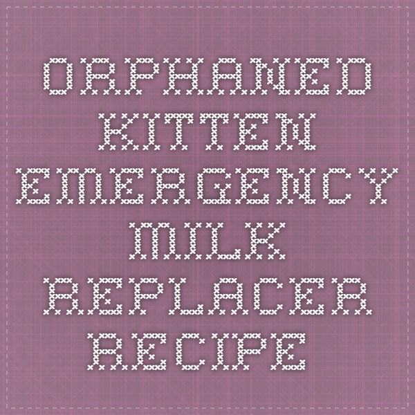 Orphaned Kitten Emergency Milk Replacer Recipe Kitten Formula