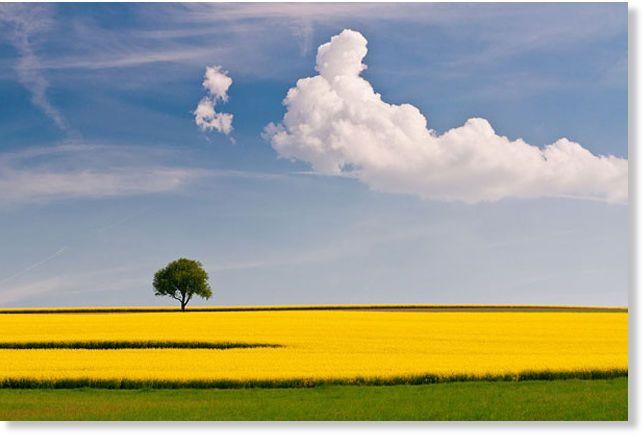 Las mejores imágenes de 30 paisajes de ensueño -- La Ciencia del Espíritu -- Sott.net