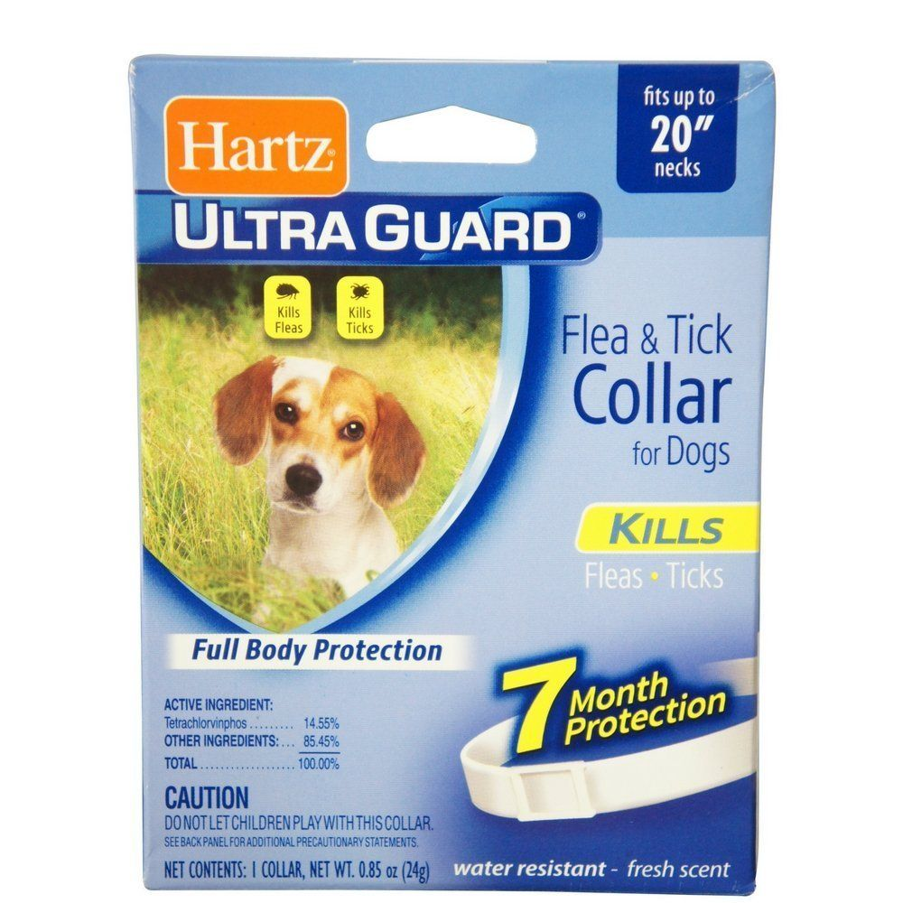 Hartz Ultraguard Flea And Tick Dog Collar 20 White 1 Ea Pack Of 12 Nice Of You To Have Dropped By To View Our Photo Ticks On Dogs Flea And Tick Fleas