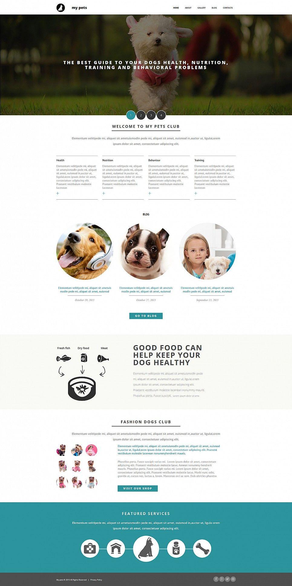 Pet Shop Website Builder Responsive Moto CMS 3 Template