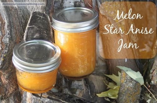 Melon star anise jam star anise jelly fruit and syrup - Advice making jam preserving better ...