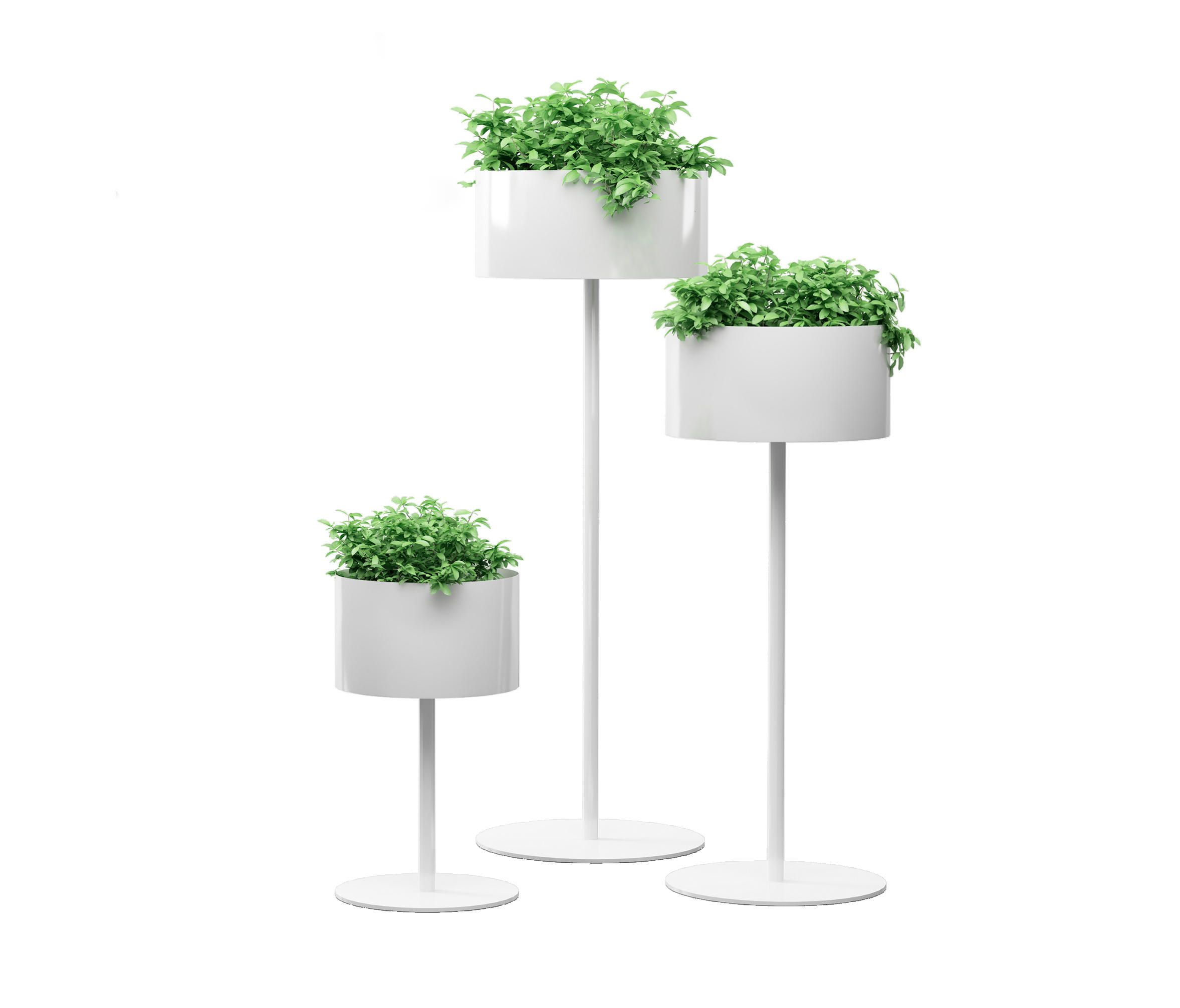 Green cloud standing by systemtronic plant holders plant stands