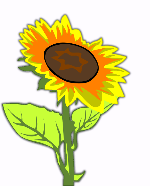 free sunflower clipart public domain flower clip art images and rh pinterest com free sunflower clipart black and white free sunflower clipart borders