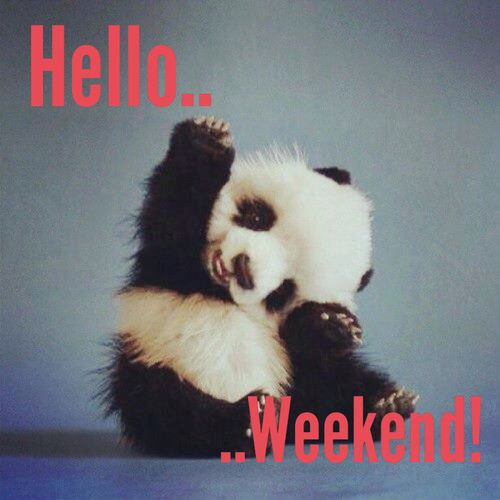 Panda Quotes Interesting Hello Weekend Weekend Panda Weekend Quotes  Weekend  Pinterest