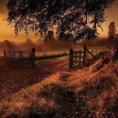 Derrymore,NORTHERN IRELAND There is so much character in this shot. A bit eerie and mysterious and yet so beautiful and peaceful like morning dawning and all is quiet. What a backdrop to a novel this place would make..