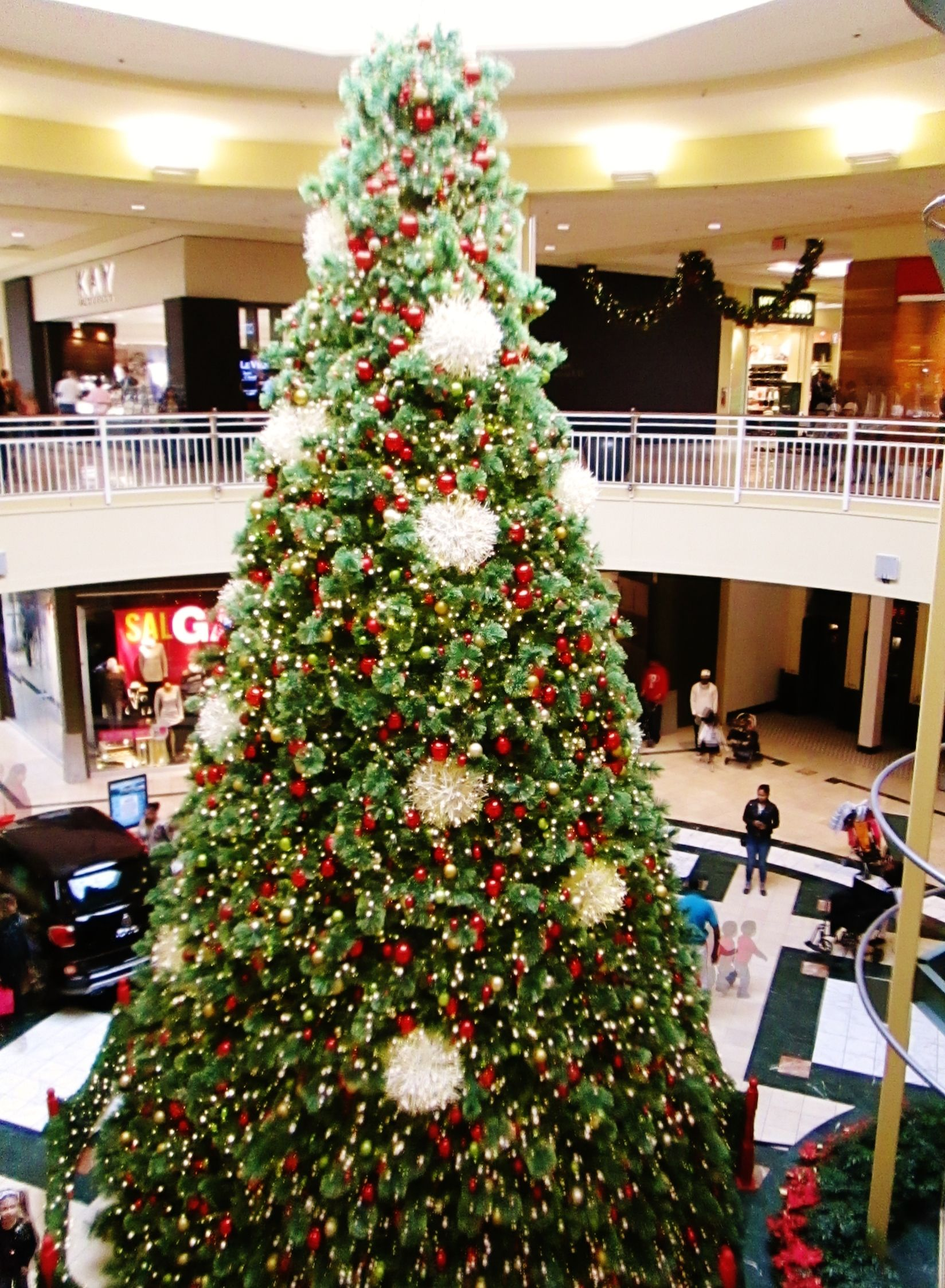 Really Tall Christmas Tree At Lehigh Valley Mall Pennsylvania Dutch Country Tall Christmas Trees Lehigh Valley