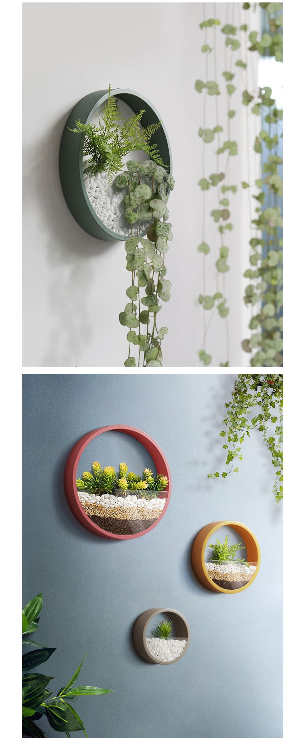 Round Wall Planter Flowers Trees Succulents Treppe
