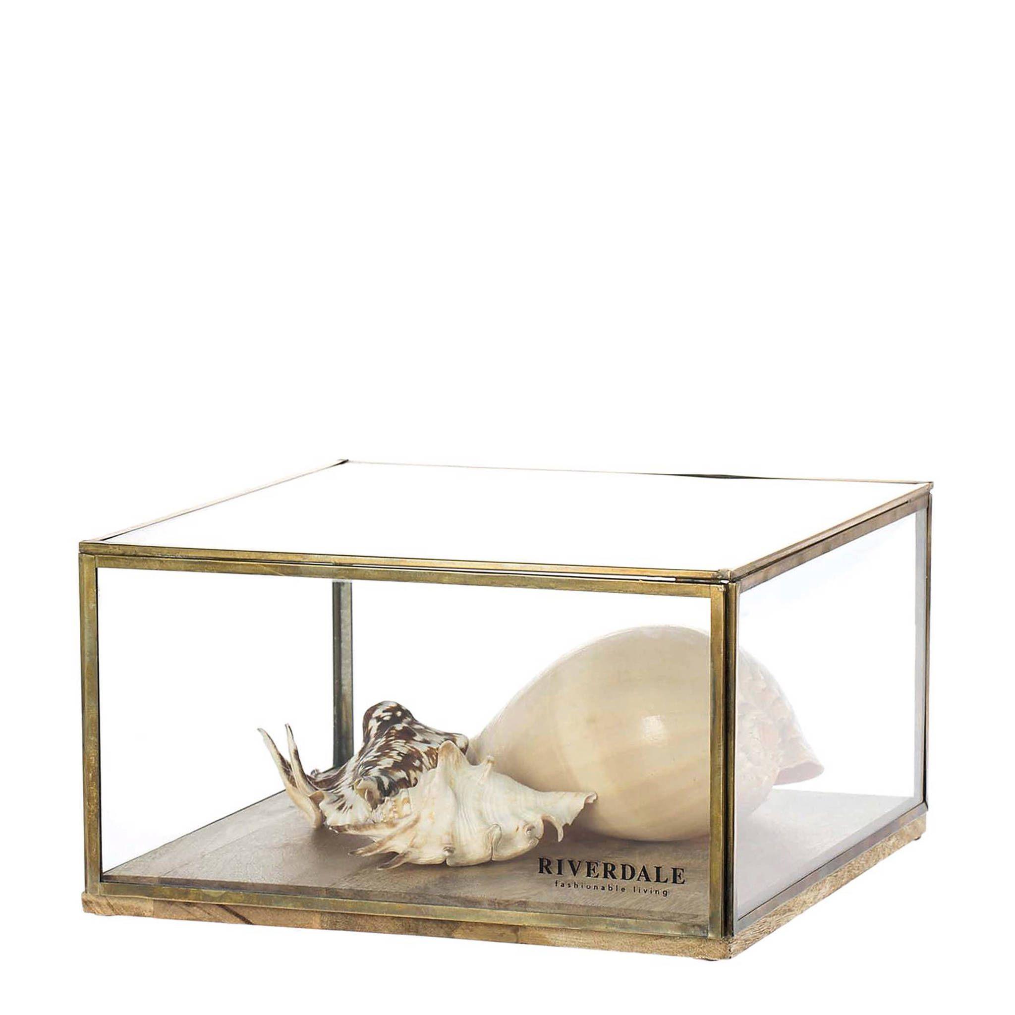 Riverdale displaybox #woonaccessoires Decoreer deze displaybox van Riverdale met jouw favoriete woonaccessoires of waardevolle vonst. De stijlvolle displaybox heeft een chique uitstraling #woonaccessoires