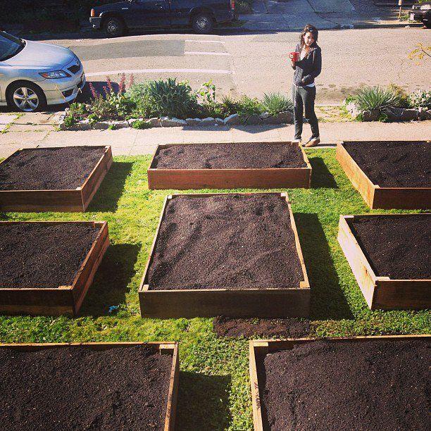 Who needs a front lawn?  Grow veggies instead!  Be generous!  @Oresundsborg: Hvis vi går videre med kasser foran, så kunne vi få dem lavet ret billigt af en tømrer, i et aflangt høj-format, ikke firkantet selvfølgelig.