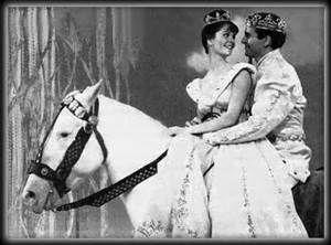 Stuart Damon Cinderella - Bing Images