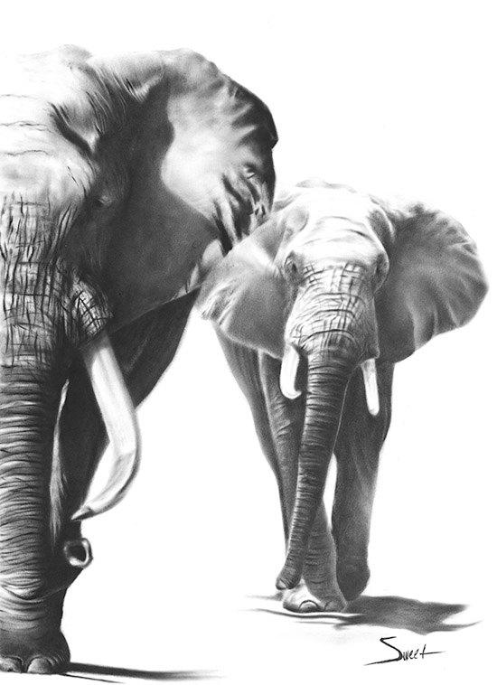 Elephant art print african elephant print elephant gift elephant decor elephant wall art black and white elephant painting animal art