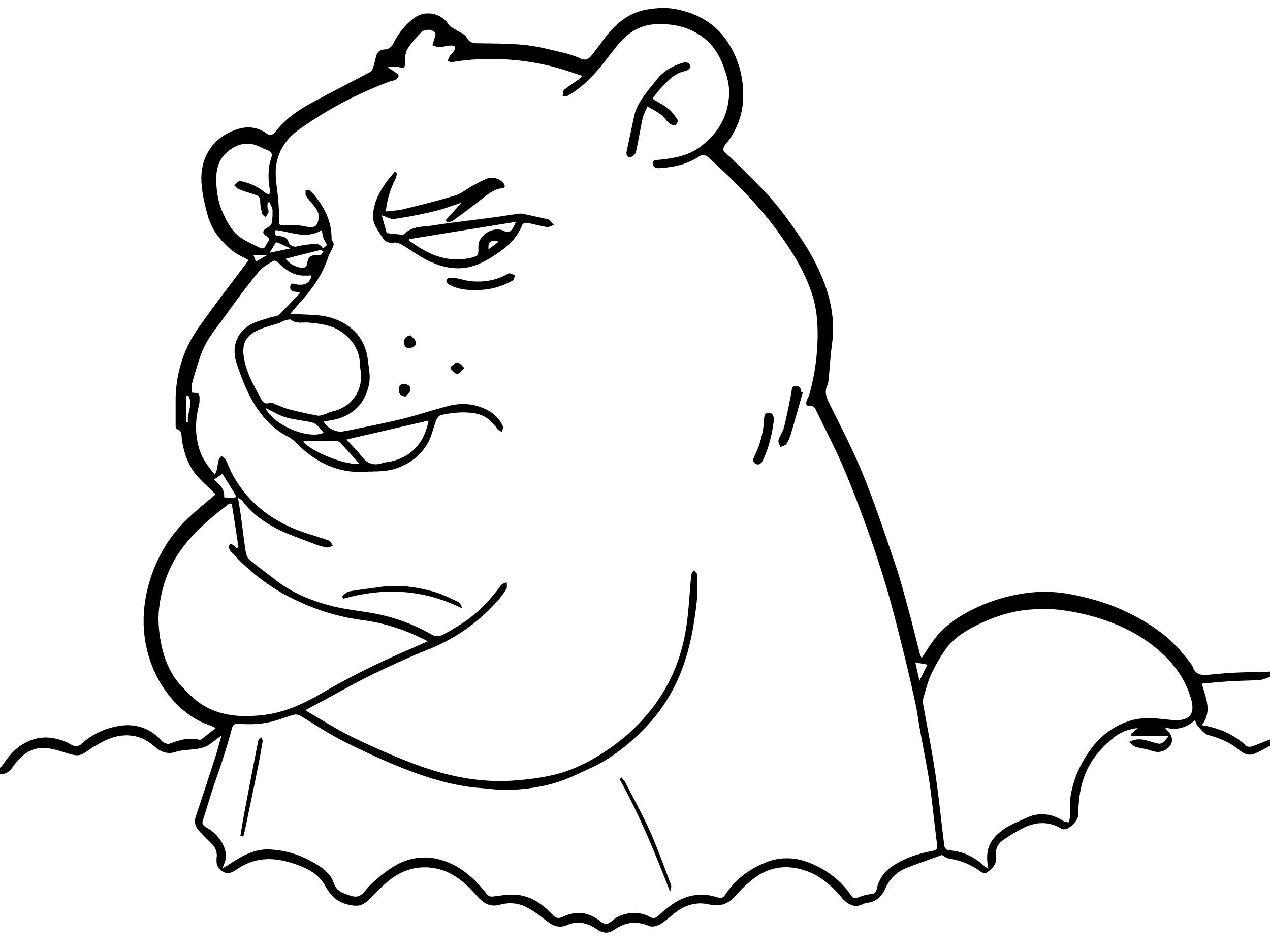Groundhog Coloring Pages Or Sheets Cartoon Coloring Pages Monster Coloring Pages Coloring Pages [ 1875 x 2500 Pixel ]