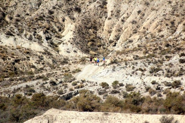 Lizard trail running - day 2