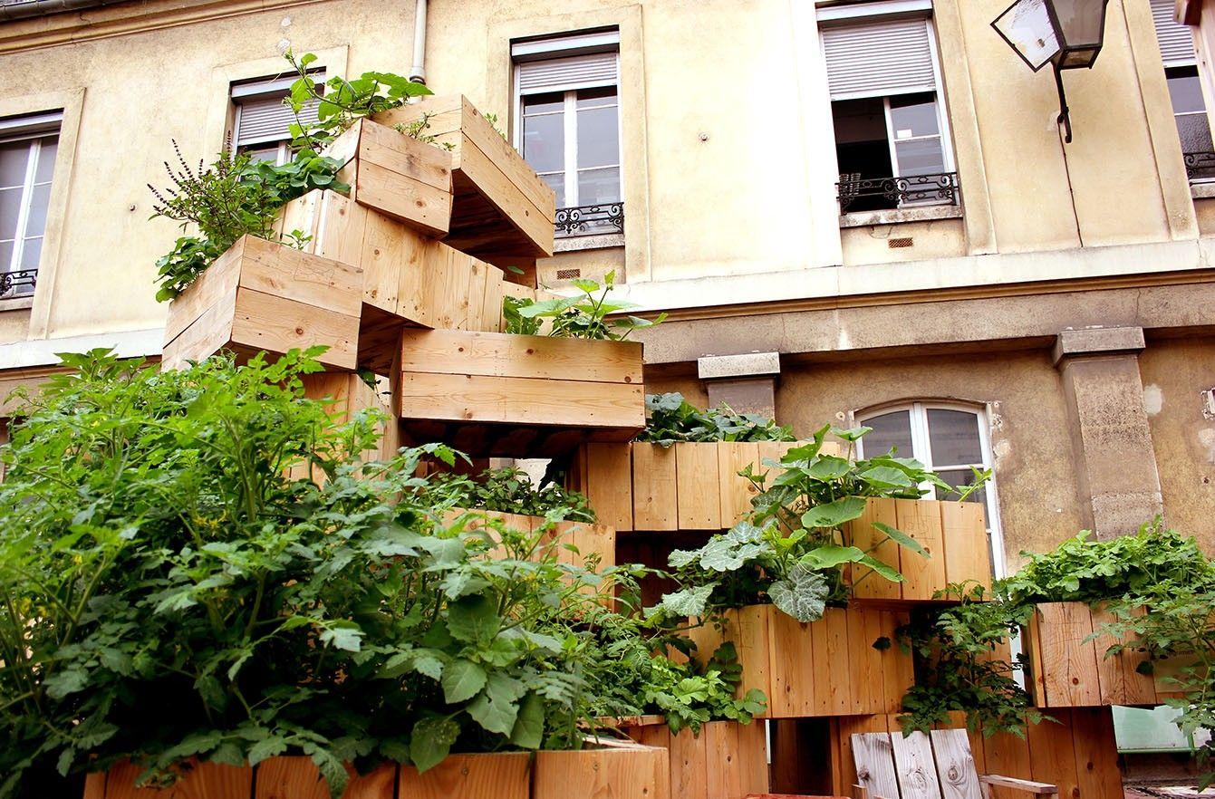 Contour De Balcon En Bambou tour à légume (avec images) | inspiration terrasse, tour
