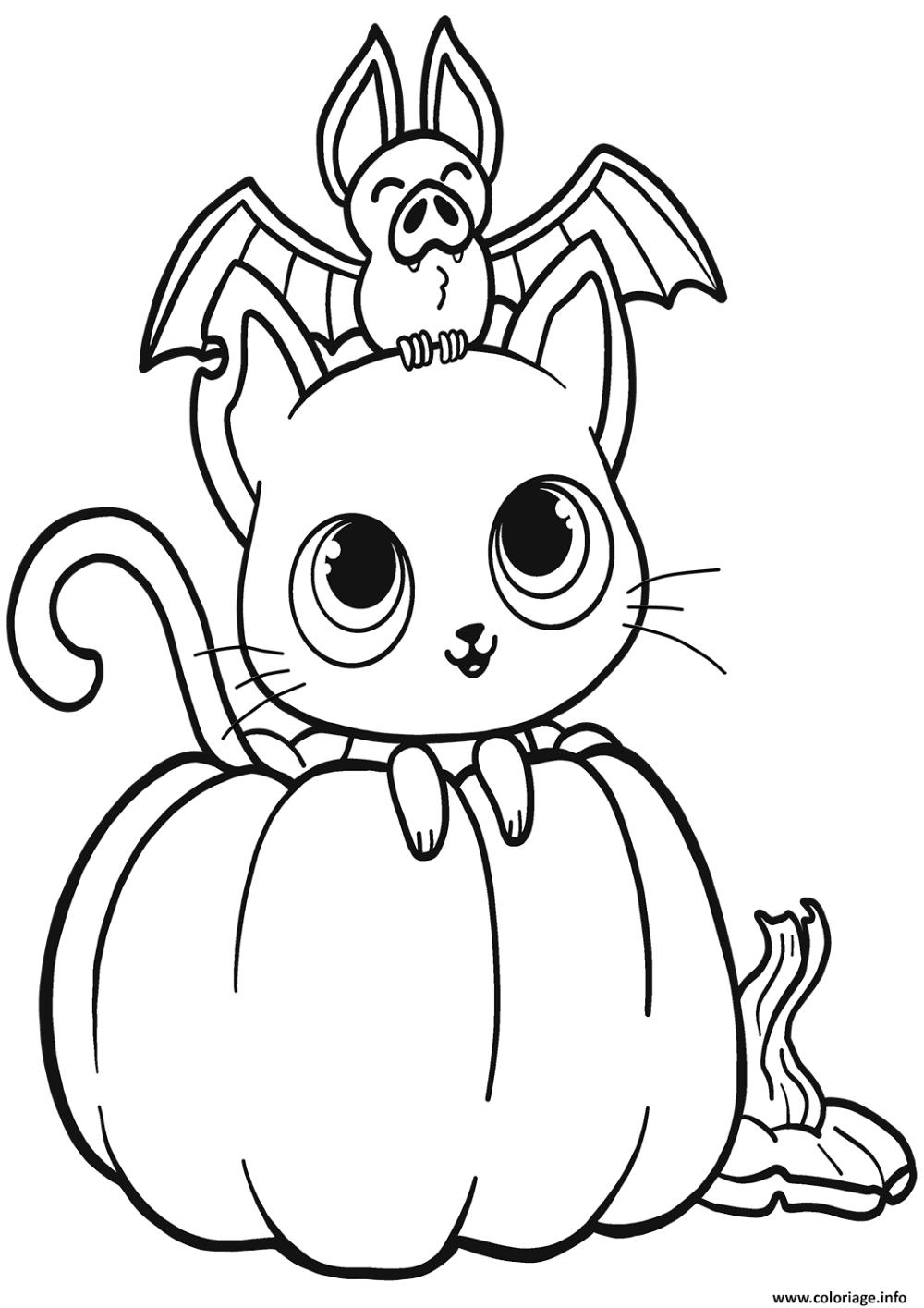 Coloriage chauve souris chat citrouille halloween à