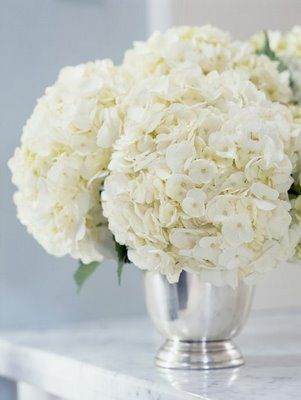 Bright And Beautiful Stacey Brandford Interiors Decorology White Hydrangea Hydrangea White Flowers