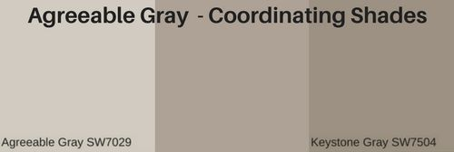 What are the most popular shades of gray paint? | The Flooring Girl #sherwinwilliamsagreeablegray