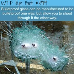 27 #Random #Facts that Will #Send Your #Ignorance to the #Recycle #Bin
