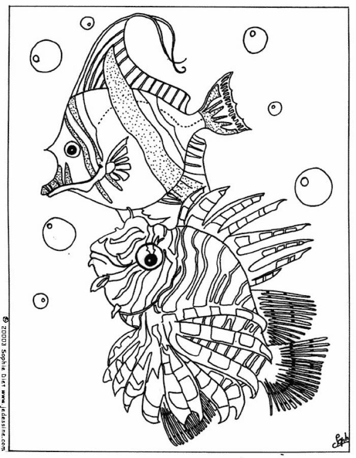 tropical fishes coloring page nice coloring sheet of sea world more content on hellokidscom