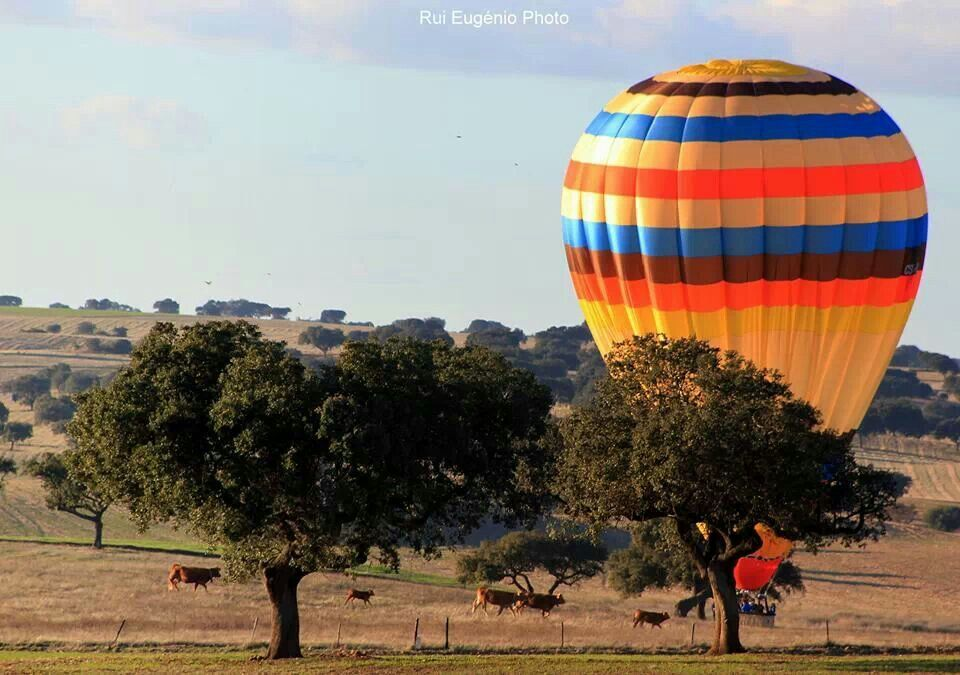 Ballooning In Beja With Emotion Portugal Alentejo Portugal Alentejo Portugal Viagem