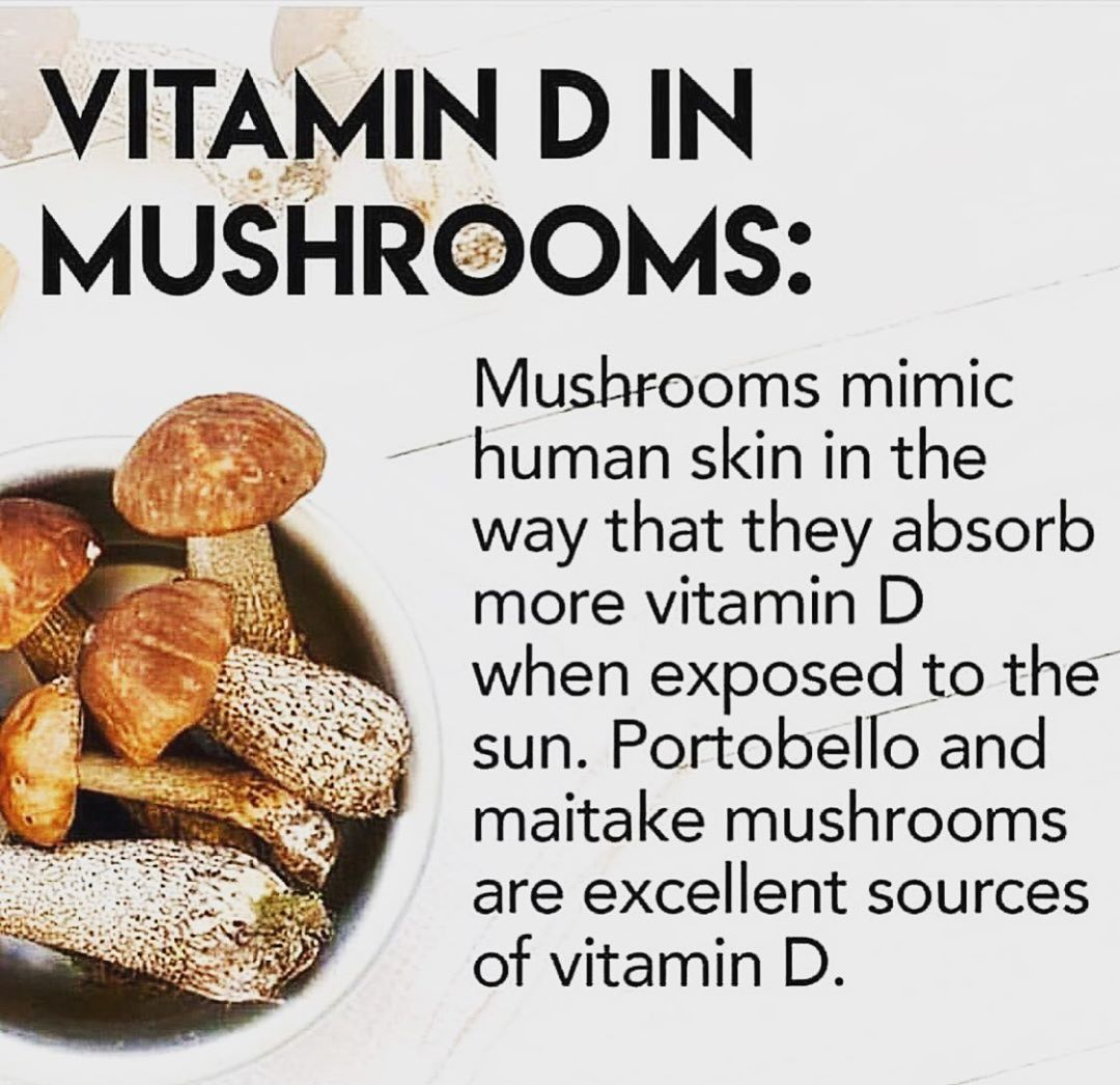 Magic in mushrooms recently i have been doing a lot of