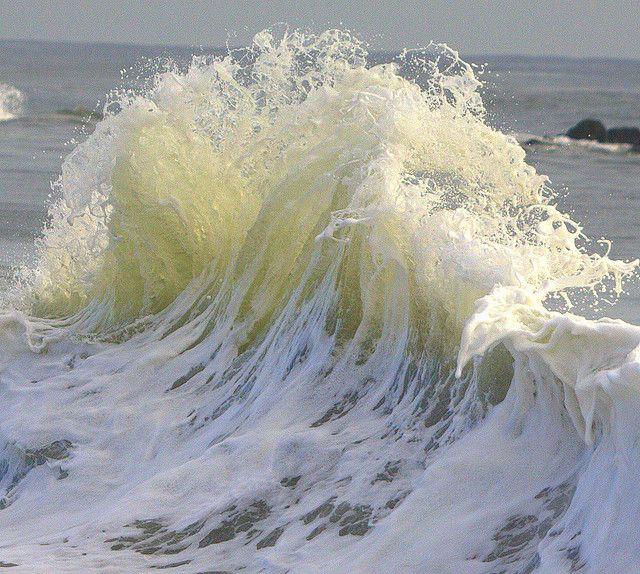 Glass Wall Wave (Sea Sculpture No.6)
